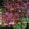 Kép 3/6 - Napelemes 100 LED-es rózsaszín dekorációs fényfüzér, kerti égősor