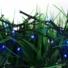 Kép 5/7 - Napelemes 300 LED-es kék dekorációs fényfüzér, kerti égősor
