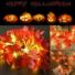 Kép 7/7 - Elemes 40 LED-es Juharfa levél fényfüzér