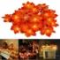 Kép 5/7 - Elemes 40 LED-es Juharfa levél fényfüzér