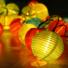 Kép 5/8 - Napelemes 10 Led-es  színes Lampion fényfüzér