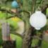 Kép 8/9 - Világító led lampion 20 cm-es, 2 db elemmel, 3 db készlet